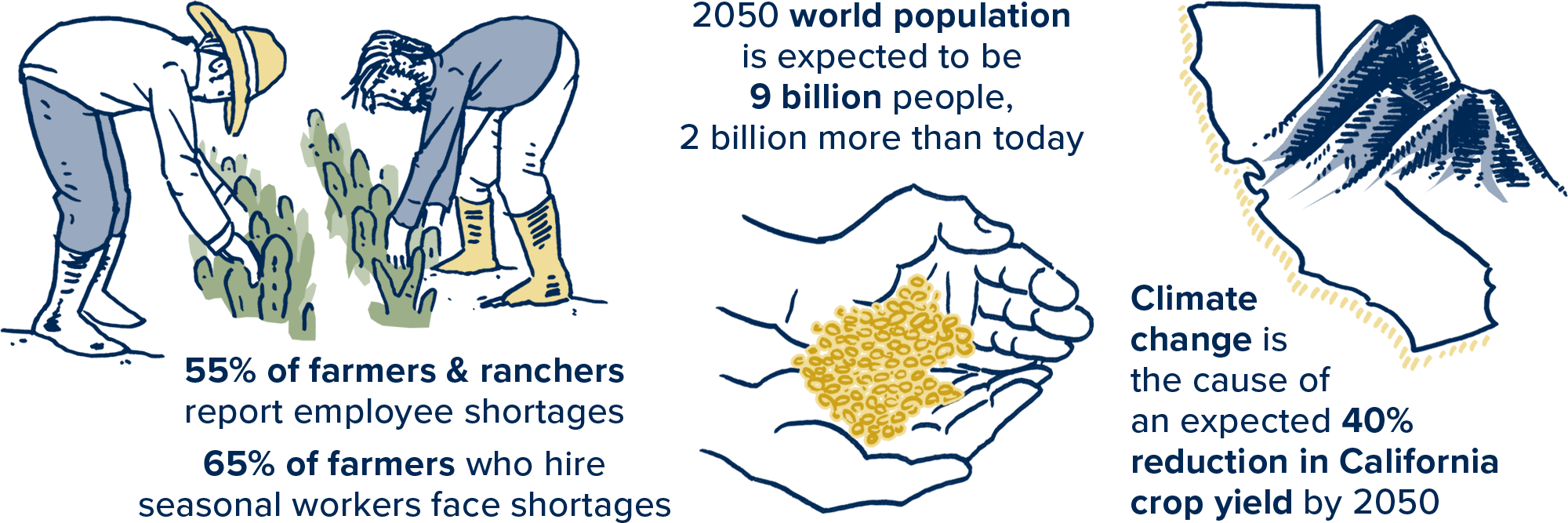 Future of Agriculture and Food: Facts and Figures for Feeding 9 Billion by 2050