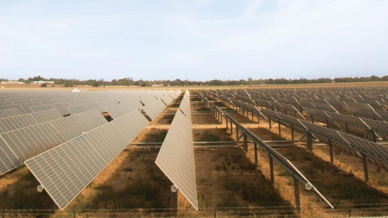 Solar panels on a field can help UC Davis become the first zero-carbon college campus.
