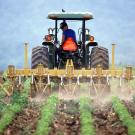 Tractor plowing a field with crops planted